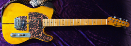 Prince - Mad Cat Guitar Photo 15